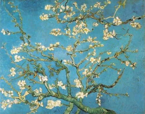VINCENT VAN GOGH. Blossoming Almond Tree, February 1890, oil on canvas.