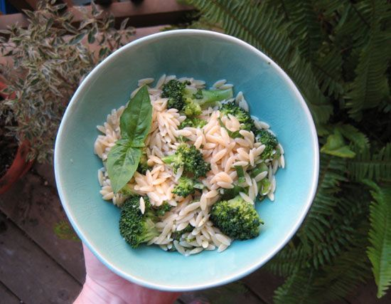Broccoli and Orzo Salad with Basil Vinaigrette