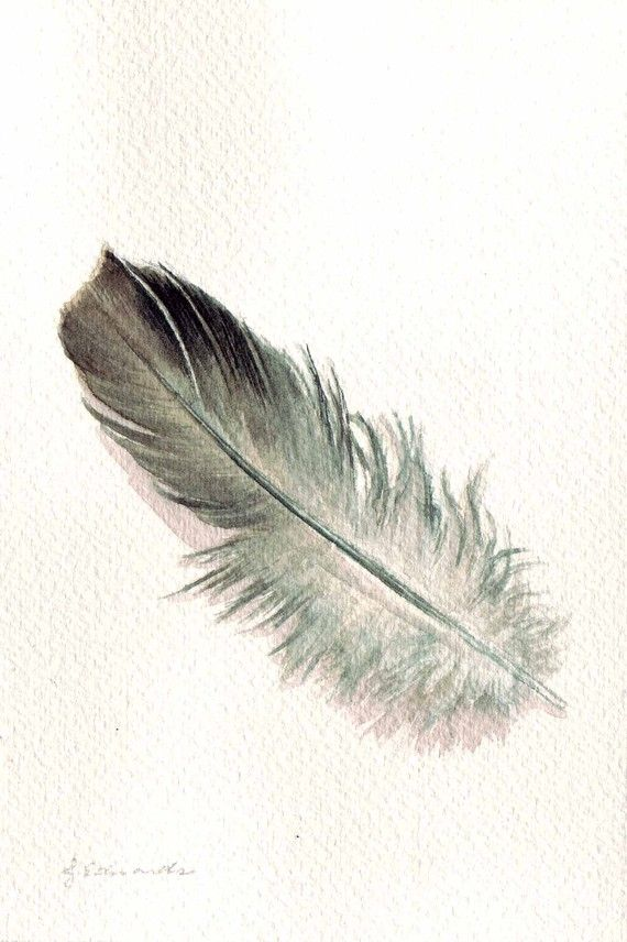 Watercolor Feather Pinterest