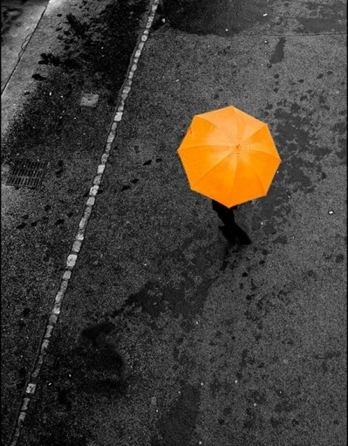 #orange #umbrella - to be in #focus