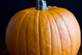 ... Pumpkin & Make Fresh Pumpkin Purée – A Step-by-step Photo Tutorial