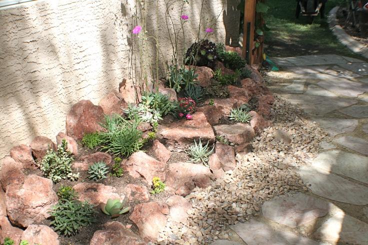 Succulent Rock Garden Ideas Photograph DIY Succulent Rock