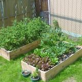 Another idea for raised beds using fence posts.