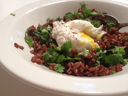 clean-the-cupboard poached egg over red rice with cilantro and black ...