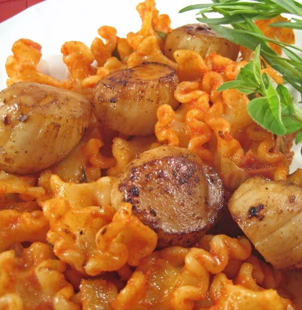 Grilled Scallops on Tomato Tarragon Pasta, easy main course for summer