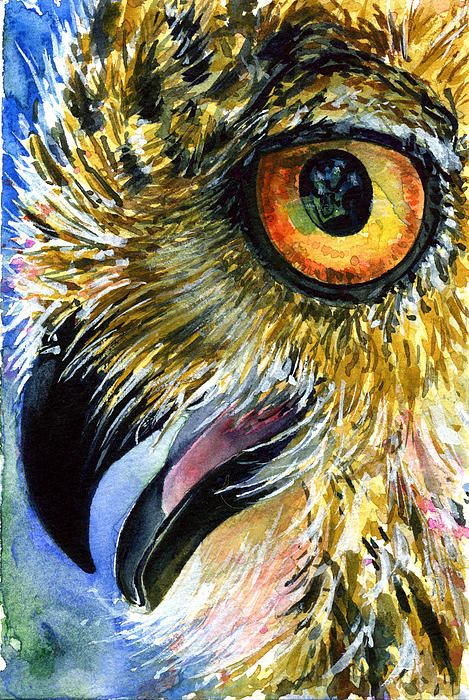 Owl Eyes Paintings Eyes of Owls 14 Painti...