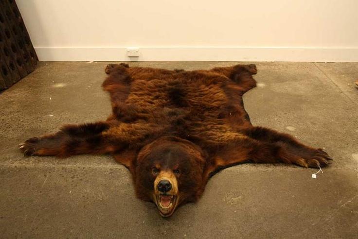 Bear Skin Rug The Inner Sanctum Pinterest