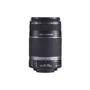 #3: Canon EF-S 55-250mm f/4.0-5.6 IS Telephoto Zoom Lens for Canon Digital SLR Cameras