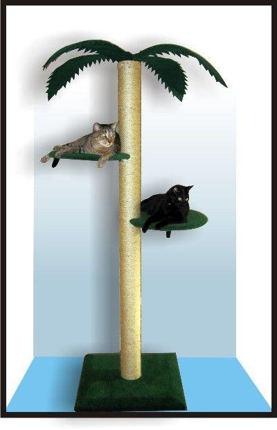 Palm cat tree   cats   Pinterest