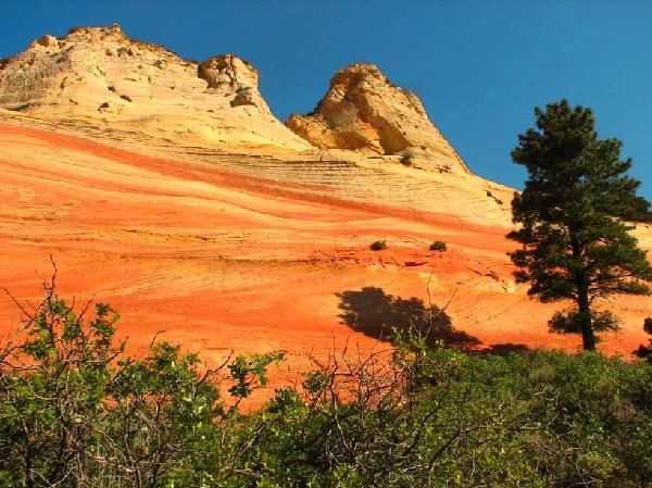 utah wilderness | Stay Informed | Nature Landscapes | Pinterest