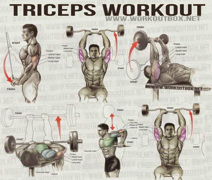 Triceps Workout! | Fitness | Pinterest