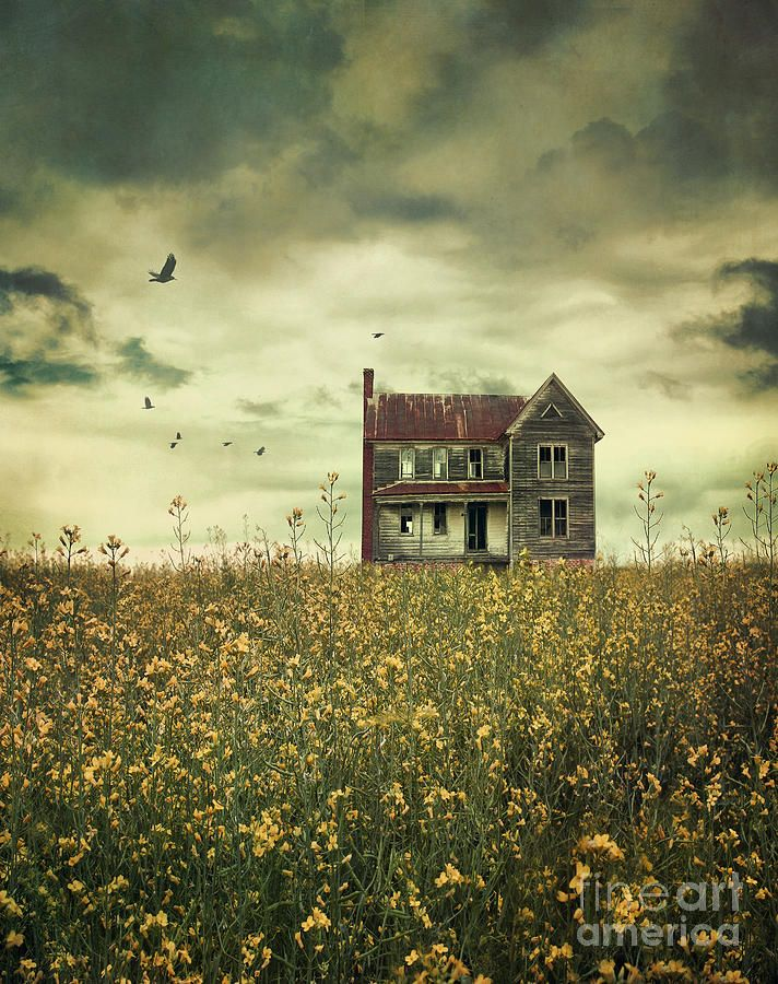 Old Abandoned Farmhouse In Field Of Rapeseed Print By