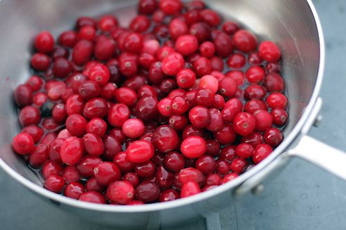 Cranberry Sorbet Recipe — Dishmaps