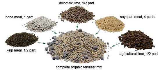 Organic Fertilizer Recipe The Garden Bench Pinterest 400 x 300