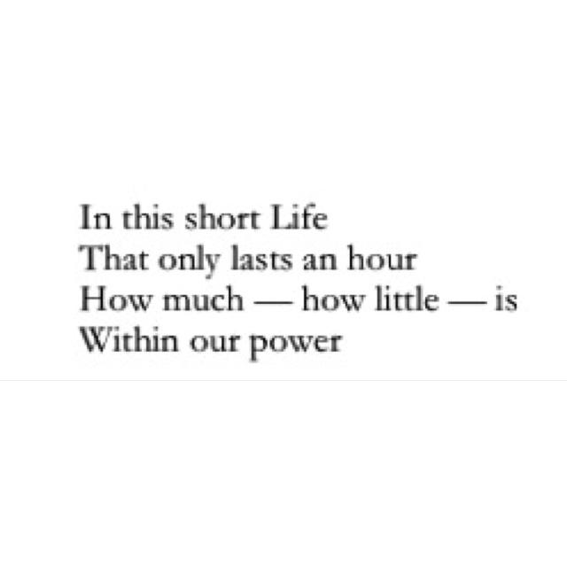 poems emily dickinson quotes quotesgram