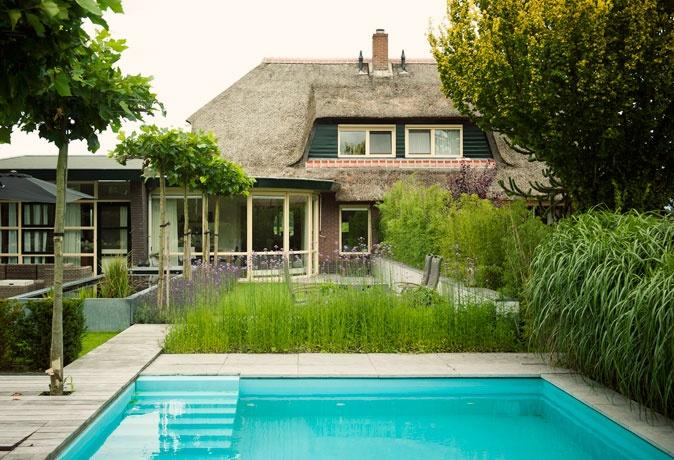 Planten rond zwembad mooie tuinen pinterest - Ontwikkeling rond een zwembad ...