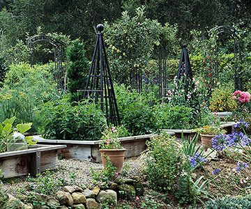 Build trellises, obelisks, or tuteurs into your raised beds or buy one or two to grow vining crops such as peas, beans, cucumbers, and even tomatoes. The extra height brings more visual drama to your plantings, especially if most of what you grow is relatively low.