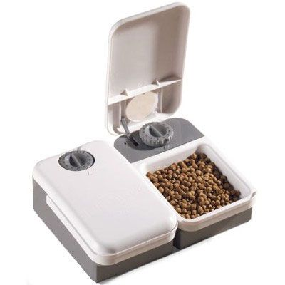 Pin By Automatic Pet Feeder On Pet Feeder And Pet Waterer