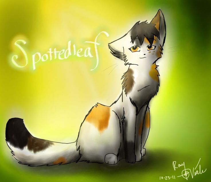 warrior cats coloring pages spottedleaf - photo#32