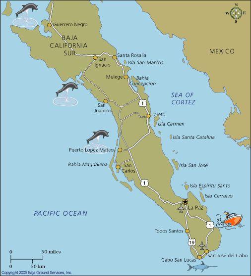 Map Of Baja California Islands