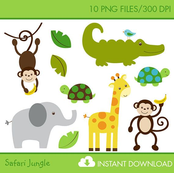 Jungle Safari Animals Clip Art