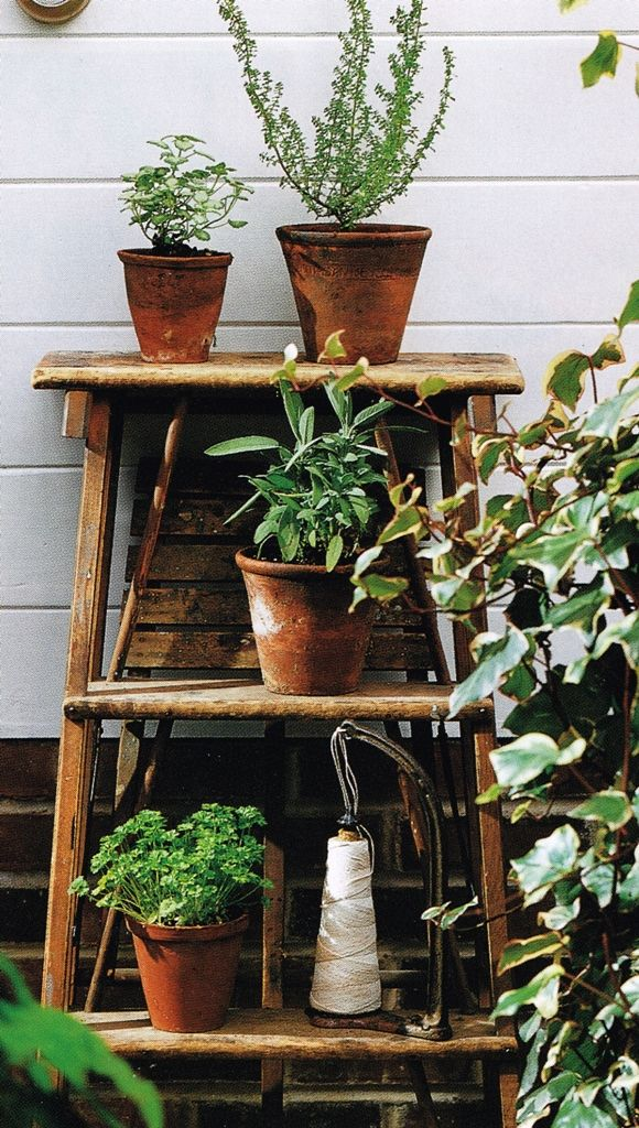 Outdoor Plant Shelving Outdoor Oasis Pinterest