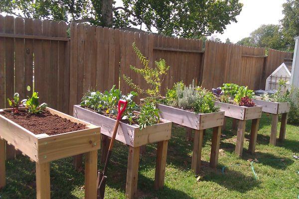 How To Build Raised Garden Beds On Legs Gardening Pinterest