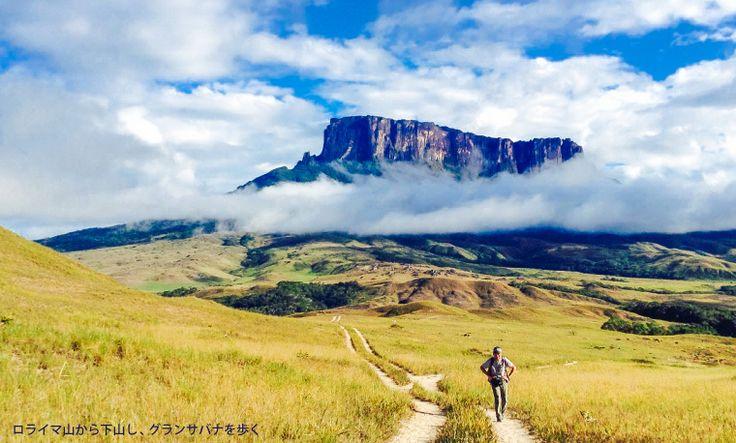 ギアナ高地の画像 p1_23