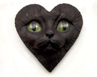valentine pet images