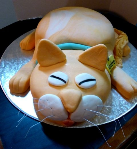 cat theme birthday cake  Megs Treats  Pinterest