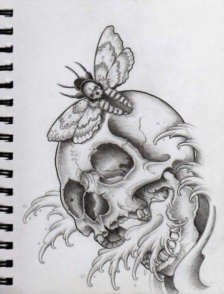 Moth Skull Meaning Skull Moth