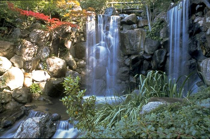 Anderson Japanese Gardens Rockford Japanese Gardens Pinterest