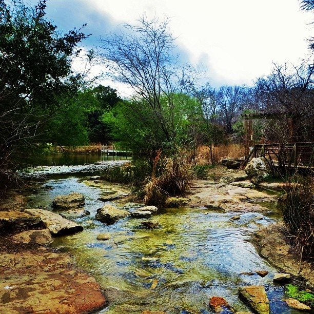 Austin Nature and Science Center ...