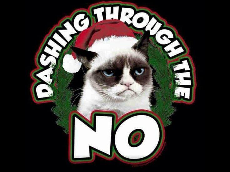 grumpy cat dashing through the no funny pinterest