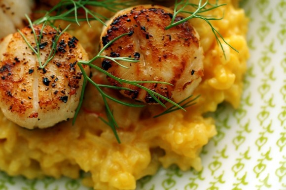 Cheddar risotto with seared scallops | Noms | Pinterest