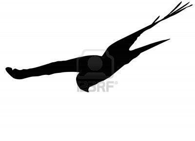 flying hawk  silhouetteFlying Hawk Silhouette