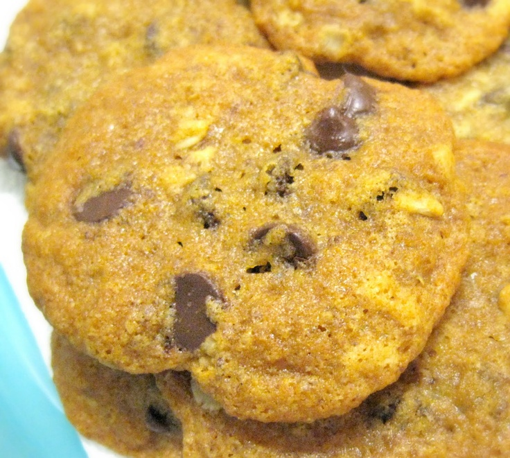 Chocolate Chip Cookies (Gluten Free, Casein Free, Egg Free, Soy Free ...