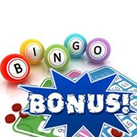 different types of bingo games explained