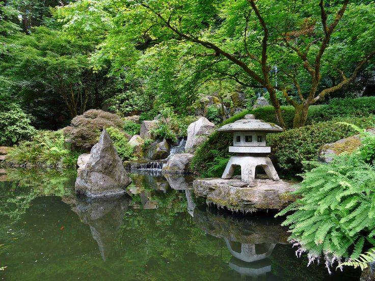 Small koi ponds trees all water pools ponds etc for Portland japanese garden koi