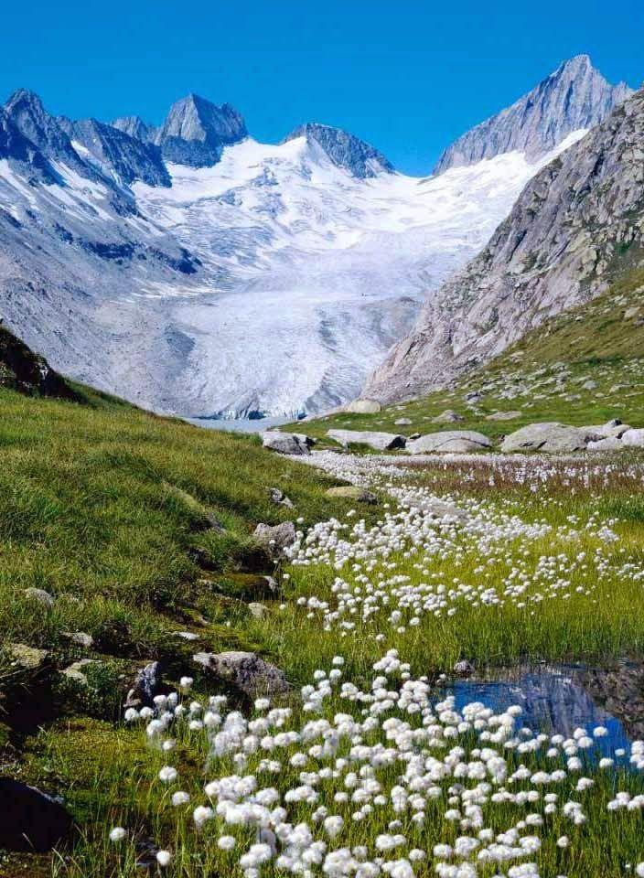 Bernese Alps, Switzerland. | Photography | Pinterest Bernese Alps, Switzerland