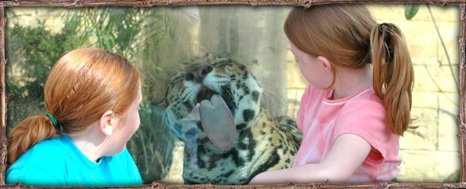 hattiesburg zoo valentine's day