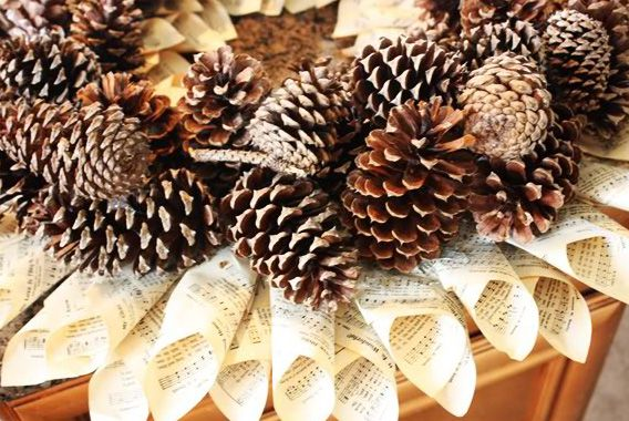 Pine cone crafts projects and crafts for pine cones hgtv design