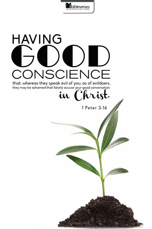 conscience voice god essay Conscience was the voice of reason and nature but it was also the voice of god newman held that the insistent force of conscience suggests that there is someone show more.