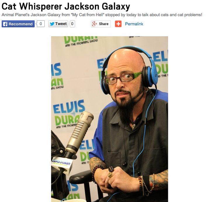 Patrick felgenhauer pictures news information from the web for Jackson cat whisperer