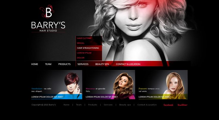 Hair Salon Websites : hair salon web design Salon Standards Pinterest