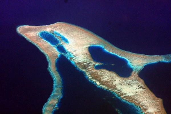 dolphin-shaped island 13 most interesting shaped islands  http://www.environmentalgraffiti.com/nature/news-15-most-incredibly-shaped-natural-islands-earth?utm_source=scribol.com_medium=referral_campaign=scribol.com
