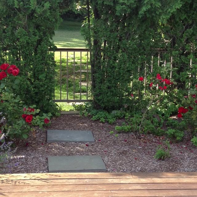 Garden Shots Patio Ideas Pinterest
