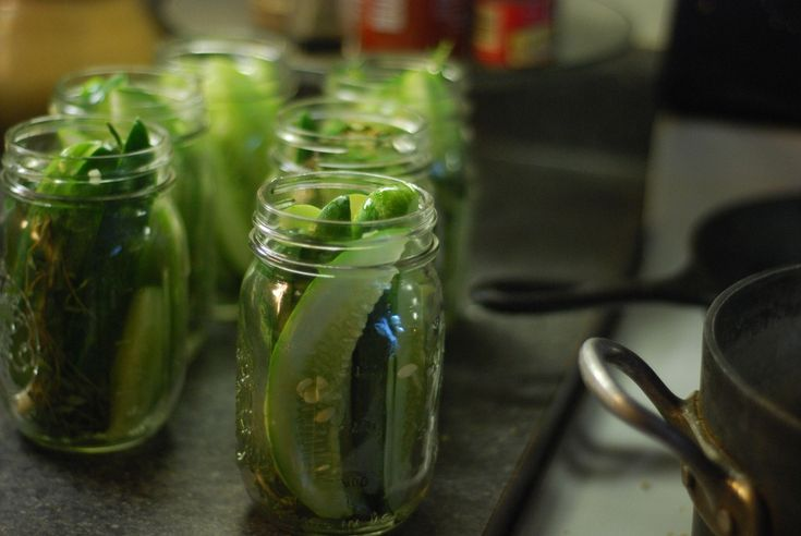 fridge pickles