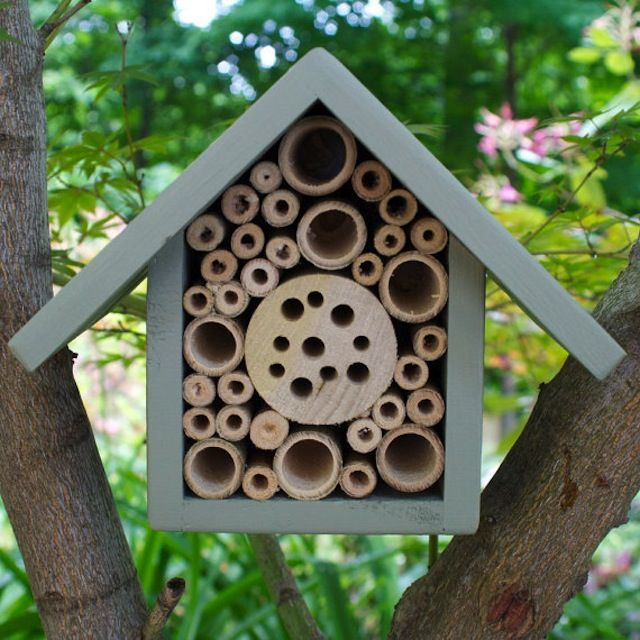 Very cute carpenter bee house outdoor spaces pinterest for Really cute houses