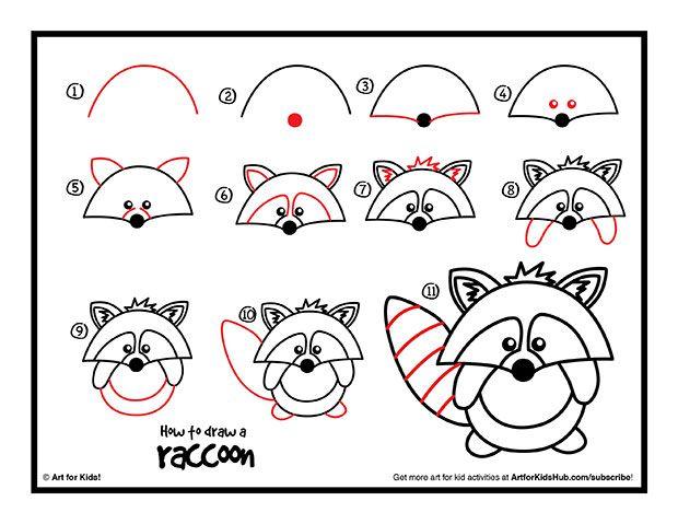 Found on artforkidshub.com Raccoon Drawing Easy
